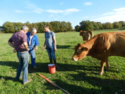 Productions animales chambres d 39 agriculture centre val de loire - Chambre agriculture loiret ...
